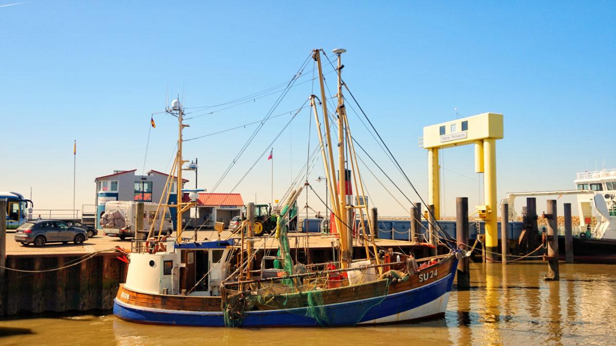 Fischkutter im Hafen von Nordstrand