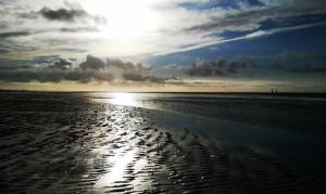 Wattenmeer-Amrum