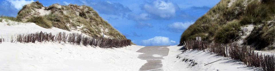 Amrum – Urlaub und Freiheit