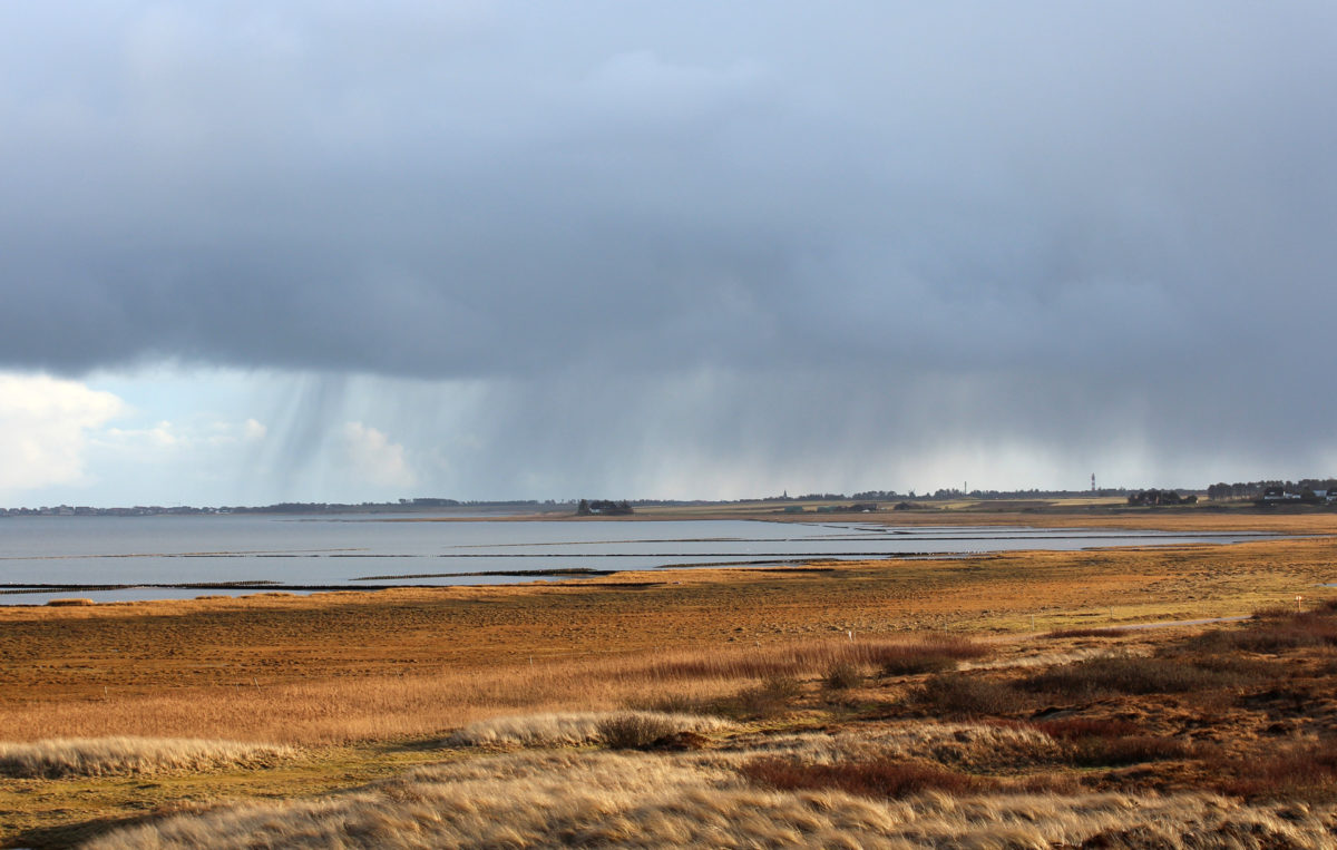Die Südküste von Amrum bei Wind und Wetter