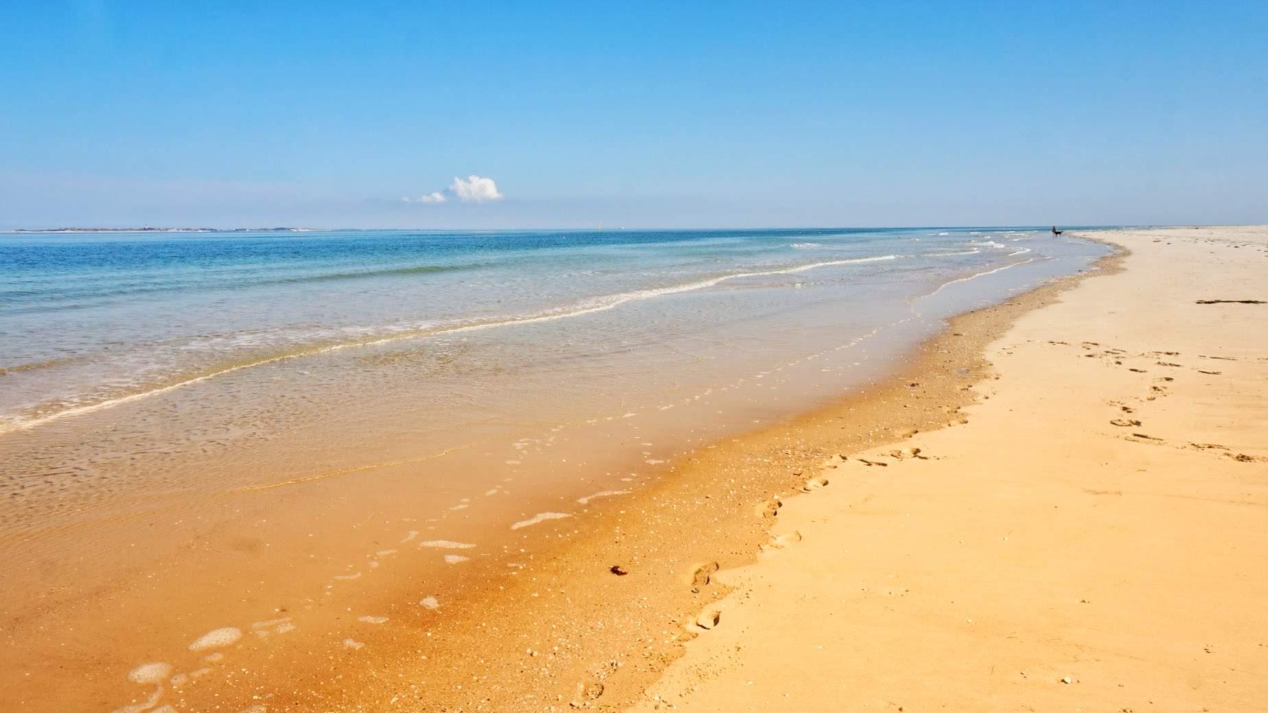 Der Kniepsand – der unglaubliche Strand von Amrum